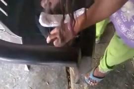 Assistir vídeo de mulheres transando com cavalo
