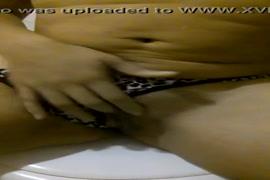 Xvideo de sexo com cachoros as brazileirinhas
