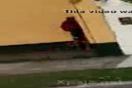 Vídeo de vovô tarado lambendo buceta