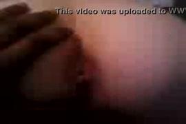 Video de sexo com vaca