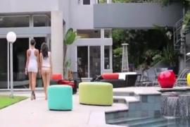 Www.xvideo.com.br mulherestransandocomcachorro